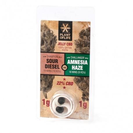 CBD Jelly 22% - Sour Diesel vs Amnesia Haze 2G