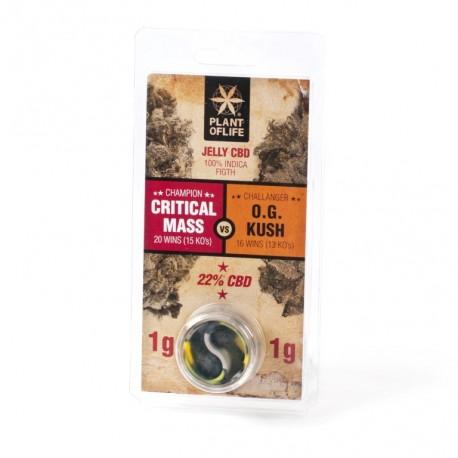 CBD Jelly 22% - Critical Mass vs O.G. Kush 2G