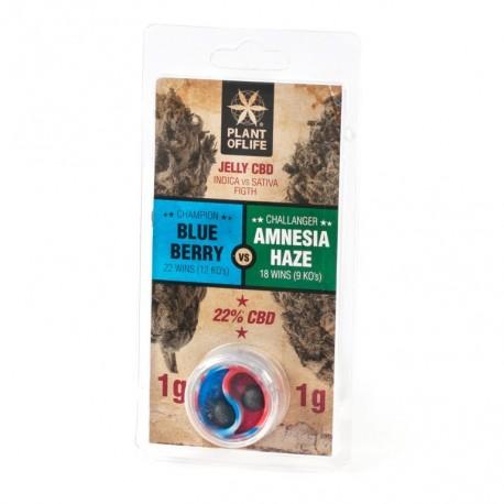 CBD Jelly 22% - Blueberry VS Amnesia Haze 2G