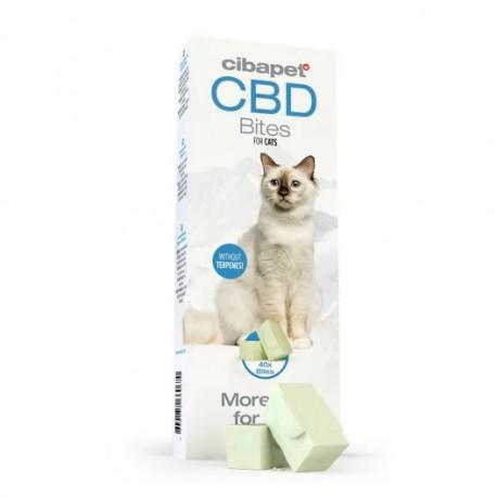 Bouchées pour chats au CBD
