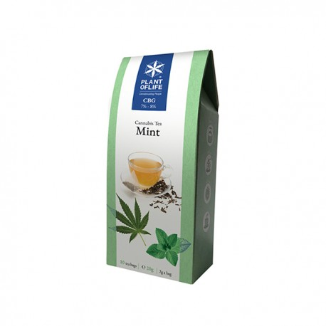 Infusion CBG tea mint -10 tea bags 2g